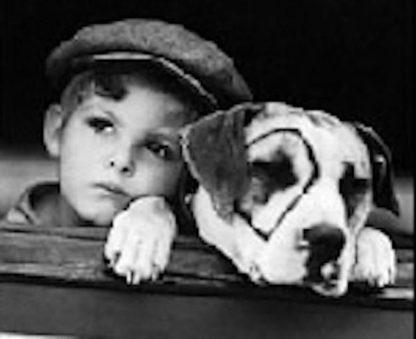 Die Kleinen Strolche Hund